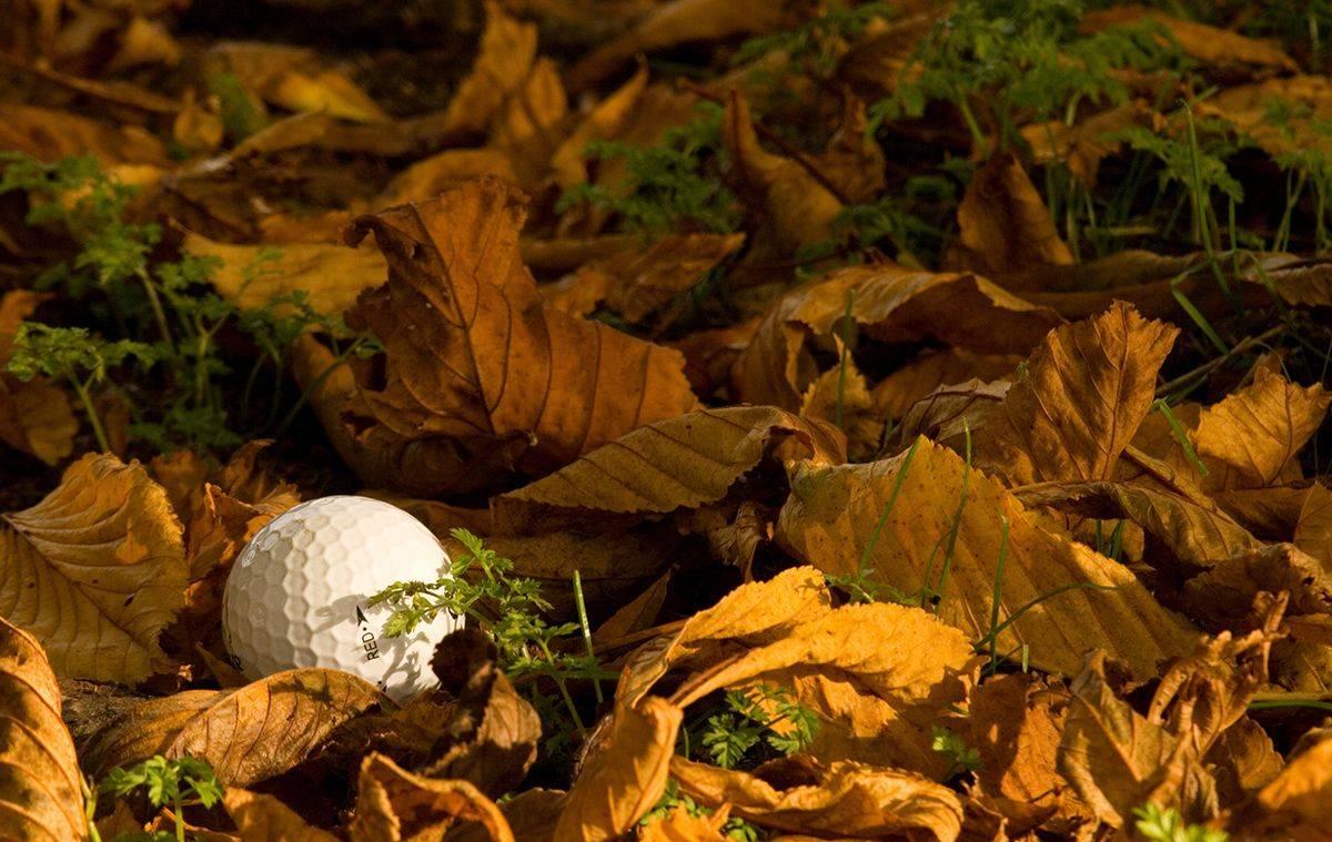 Embracing Fall Golf